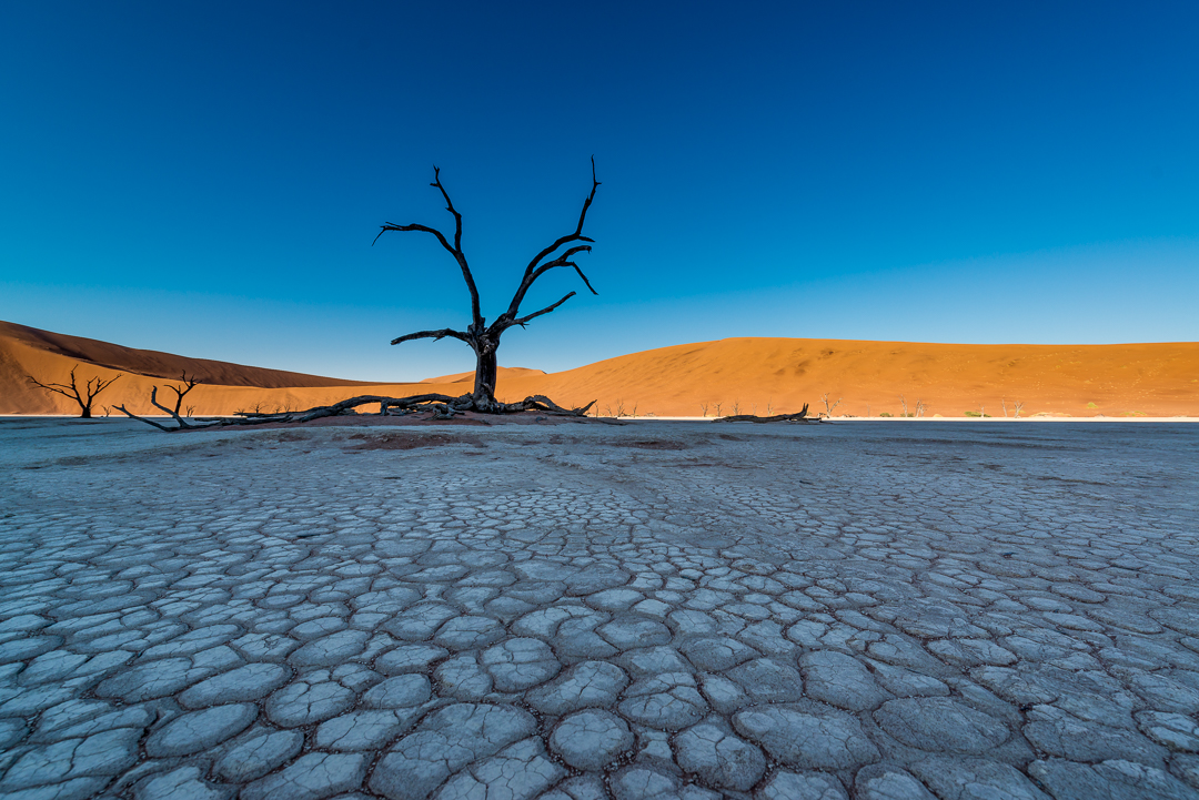 Dead Vlei - Namibia - Africa