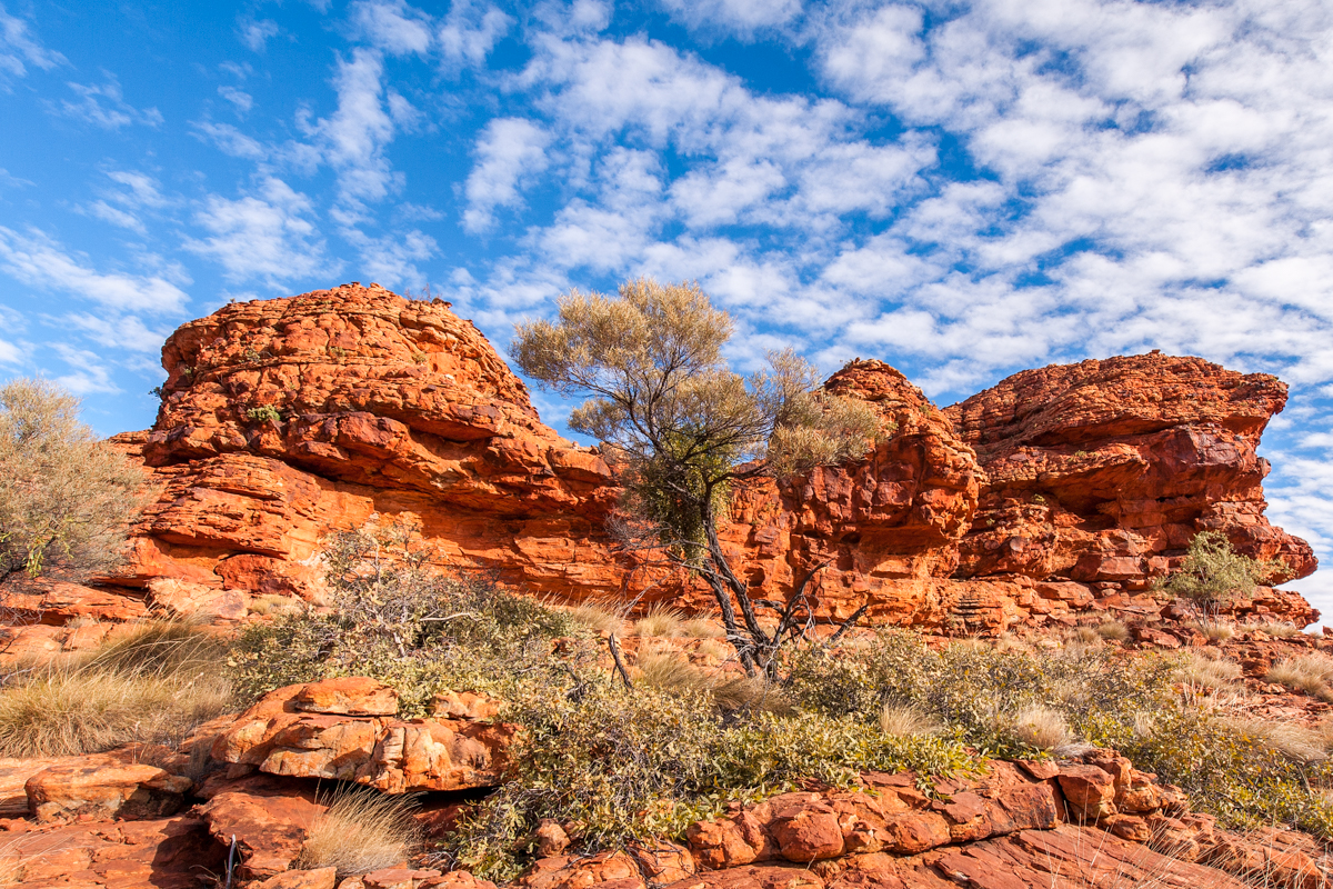King's Canyon - Northern Territory
