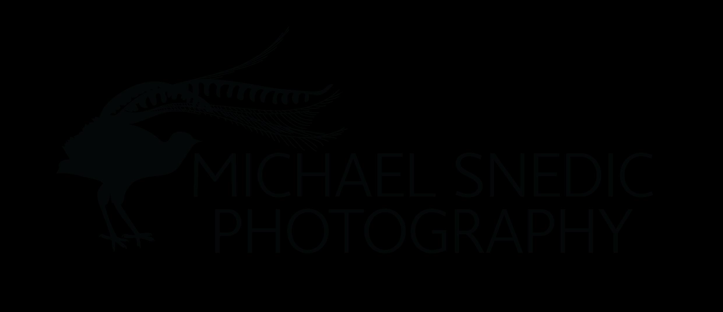 Michael Snedic Logo