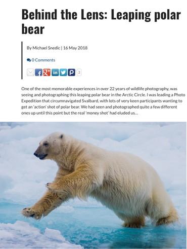 Behind the Lens: Leaping polar bear - 16 May 2018