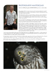 Photography Masterclass – Barking Owl Australian Birdlife – Vol. 2.1 – March 2013