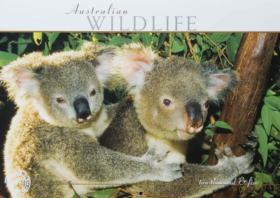 2005 Wildlife Calendar Artique Designs