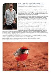 Photography Masterclass – Crimson Chat Australian Birdlife – Vol 2.4 December 2013