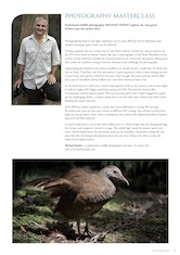Photography Masterclass – Woodhen Australian Birdlife – Vol. 1.3 – Sept. 2012