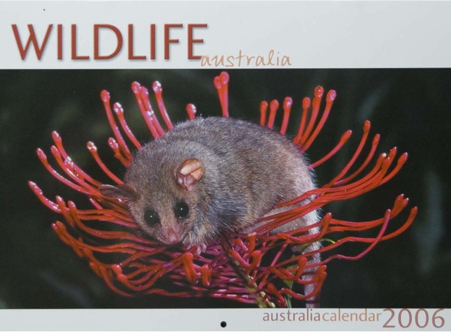 2006 Wildlife Calendar Nucolorvue Productions