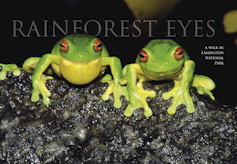 Rainforest Eyes Wildlife Australia Magazine – Autumn 2004
