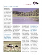 From Waste to Wetland  Australian Geographic – April-June 2004