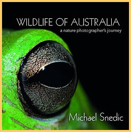 wildlife_aust_cover