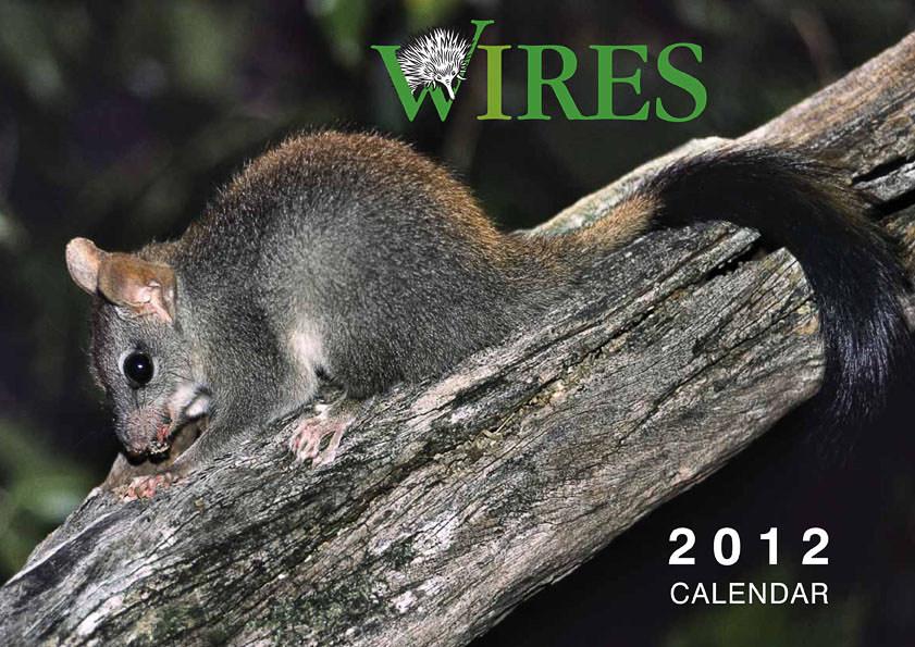 2012 Wildlife Calendar WIRES (Wildlife Rescue Organisation)
